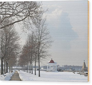 Newport Waterfront Wood Print