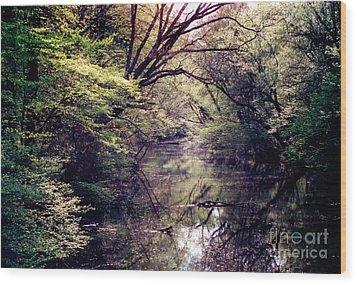 Ni River Wood Print by Anita Lewis