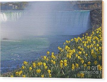 Niagara Falls Daffodils Wood Print by Charline Xia