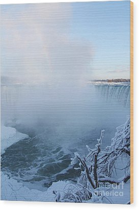 Wood Print featuring the photograph Niagara Falls -  Minus 20 C by Phil Banks