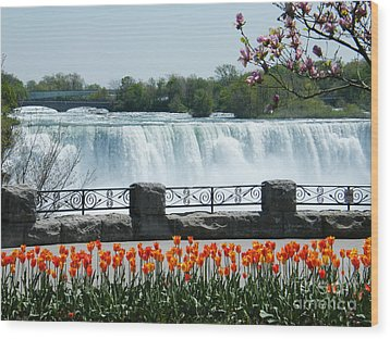 Wood Print featuring the photograph Niagara - Springtime Tulips by Phil Banks