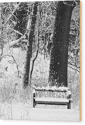 Nichols Arboretum Wood Print by Phil Perkins