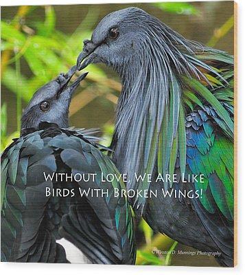 Nicobar Pigeon Wood Print