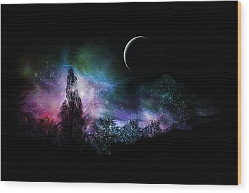 Night Landscape Wood Print