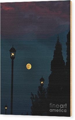 Night Lights Wood Print