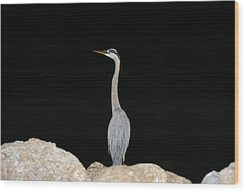Night Of The Blue Heron 2 Wood Print