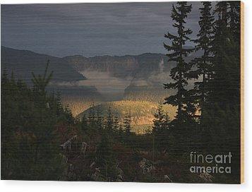 Night On Cougar Mountain Series Vi Wood Print by Amanda Holmes Tzafrir