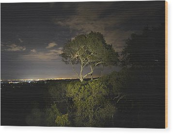 Night Glow Of A Tree Wood Print