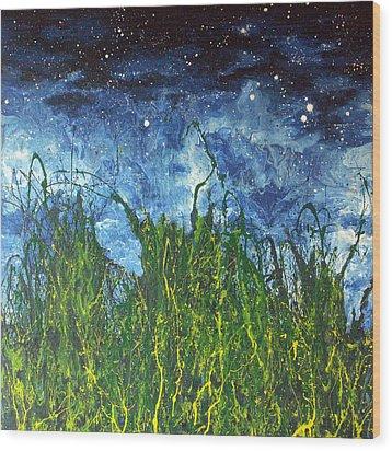 Night Sky 2007 Wood Print