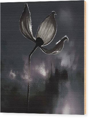 Nights I Wrote  Wood Print by Jerry Cordeiro