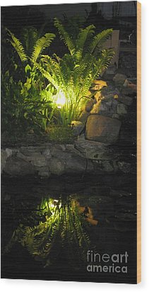 Nighttime Reflection Wood Print by Debbie Finley