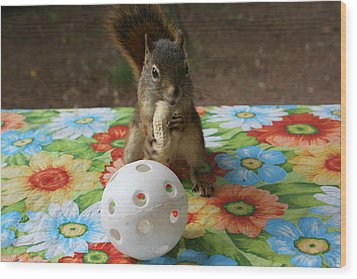 Wood Print featuring the photograph Ninja Squirrel by Paula Brown