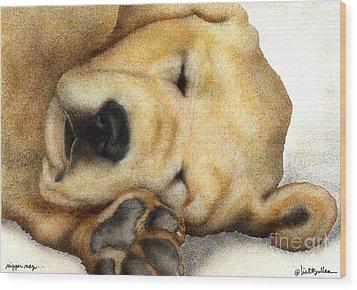 Nipper Nap... Wood Print by Will Bullas