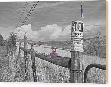 No Trespassing Wood Print by Betsy Knapp