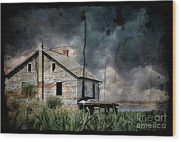 Nobody's Home Wood Print by Lois Bryan