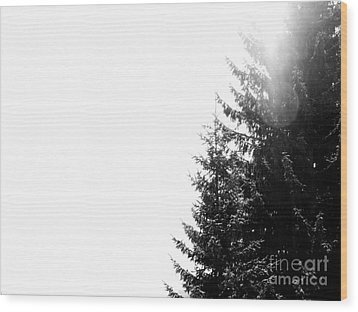 Noiseless Wood Print