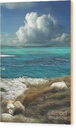 Nonsuch Bay Antigua Wood Print by John Edwards