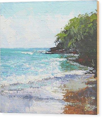 Noosa Heads Main Beach Queensland Australia Wood Print