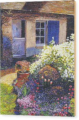 Normandy Spring Wood Print by David Lloyd Glover