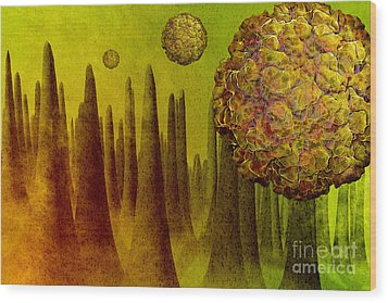 Norovirus In Small Intestine Wood Print by Carol and Mike Werner