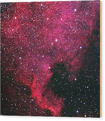 North American Nebula Wood Print by Alan Vance Ley