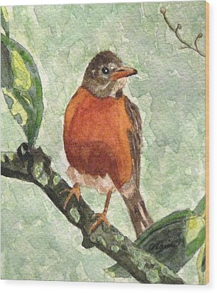 Wood Print featuring the painting North American Robin by Angela Davies