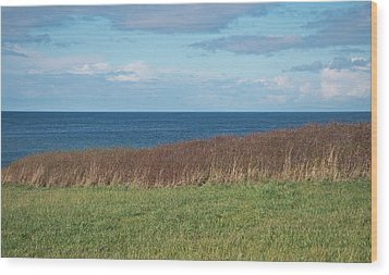 Wood Print featuring the photograph North Beach by Laurie Stewart