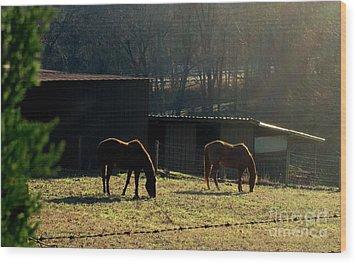 North Carolina Morning Wood Print by Bill OConnor