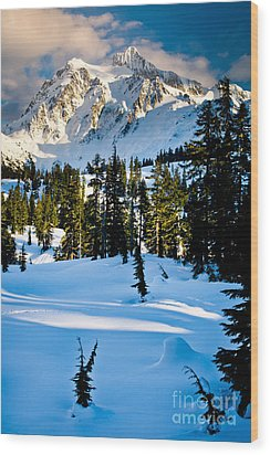 North Cascades Winter Wood Print by Inge Johnsson