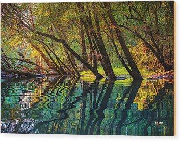 North Chick Impression Wood Print