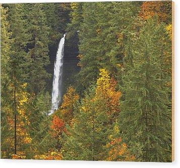North Falls Wood Print