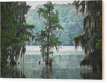 North Florida Cypress Swamp Wood Print by Rich Leighton