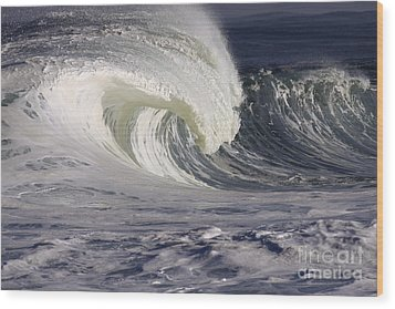 North Shore Wave Curl Wood Print by Vince Cavataio