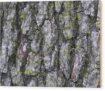 North-side Oak Bark Wood Print