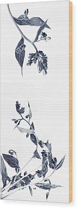 Northern Bluebells Wood Print by Priska Wettstein