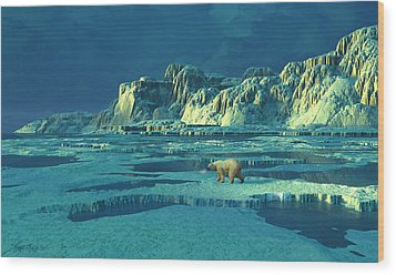 Northern Lights Wood Print by Dieter Carlton