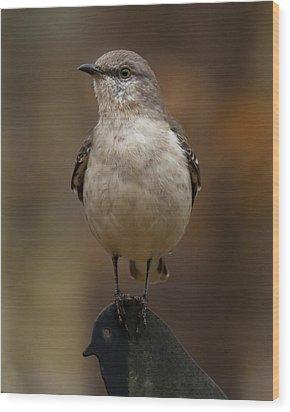 Wood Print featuring the photograph Northern Mockingbird by Robert L Jackson