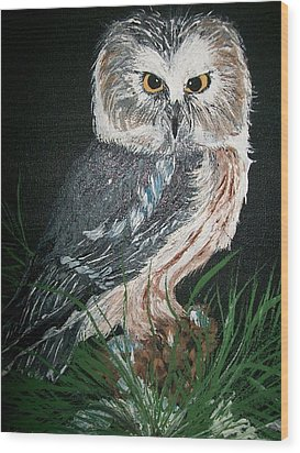 Northern Saw-whet Owl Wood Print by Sharon Duguay