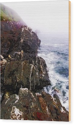 Northwest Coast-1 Wood Print