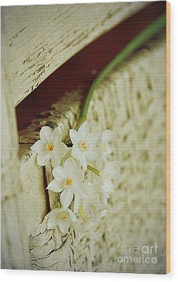Nostalgic Paper Whites Wood Print by Carla Parris