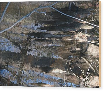 ...not Painting... Wood Print by Charles Struse Sr
