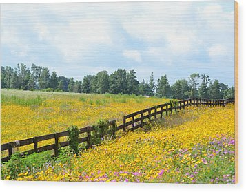 Notch In The Fence Wild Flowers Wood Print