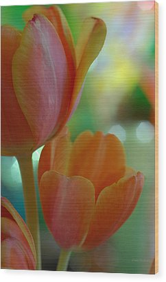Nothing As Sweet As Your Tulips Wood Print by Donna Blackhall