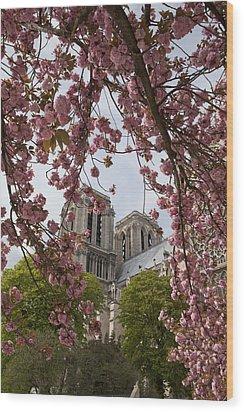 Notre Dame 1 Wood Print by Art Ferrier