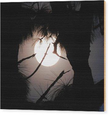 Florida November Full Moon Wood Print