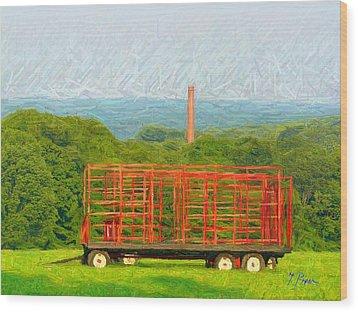 Nt - 930 Wood Print by Glen River