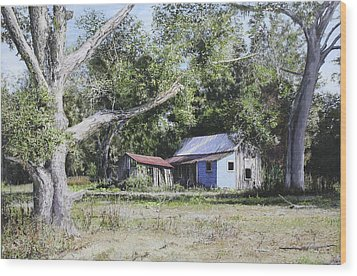 Nude Landscape Chiefland Florida Wood Print by Richard Barone