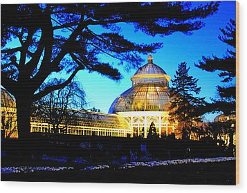 Wood Print featuring the photograph Nybg Winter Scene by Aurelio Zucco