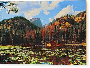 Nymph Lake Wood Print by Kathleen Struckle