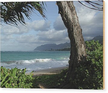 Oahu Coastline Wood Print
